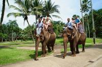 ☆いざ!象の楽園・エレファントサファリパークへ☆