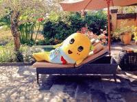 ☆ふなっしー プライベートプール付のヴィラに泊まるなっしー♪☆ The Villas at AYANA Resort BALI