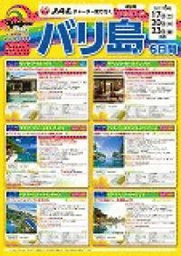 ☆日本航空(JAL)6月17・20・23日 出発限定 チャーター便で行く バリ島!!